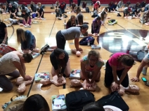4.6.17 BHS CPR3