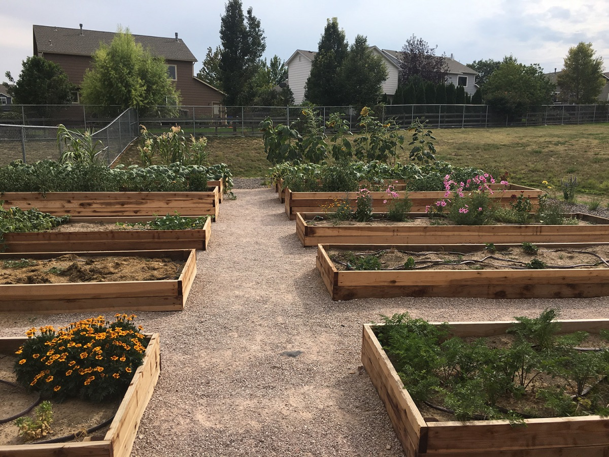 Coyote Ridge Elementary Celebrates New Learning Garden News Notes From Thompson