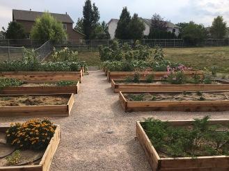 Coyote Ridge Learning Garden 2