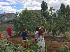 Coyote Ridge Learning Garden 3